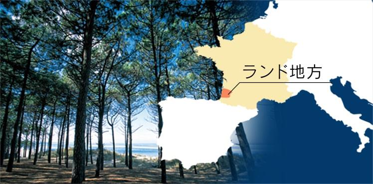 フランス ランド地方の地図